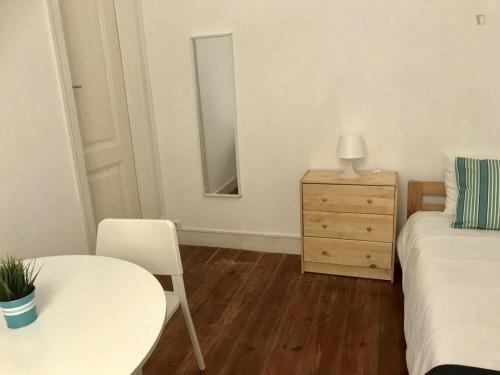 Very nice single bedroom in Saldanha  - Gallery -  2