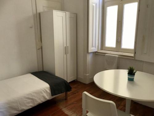 Very nice single bedroom in Saldanha  - Gallery -  3