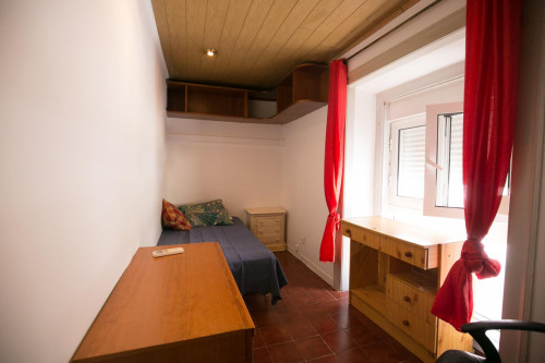 Welcoming single bedroom in a large student flat  - Gallery -  2
