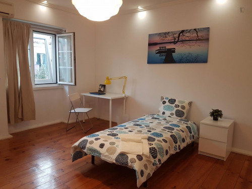 Sunny and large single-bedroom of 20 mq  - Gallery -  3