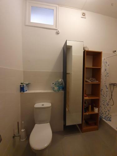 Welcoming ensuite bedroom in Alameda own bathroom - Own big bathroom Top View  - Gallery -  2