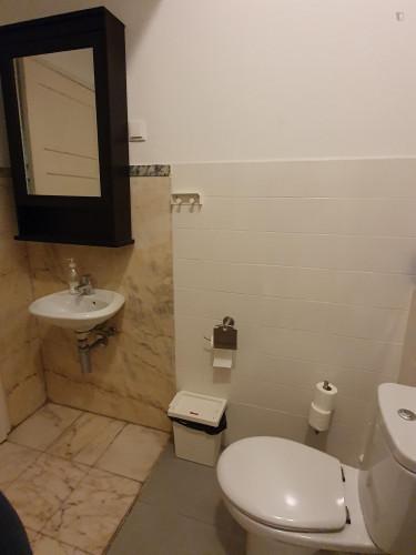 Welcoming ensuite bedroom in Alameda own bathroom - Own big bathroom Top View  - Gallery -  3