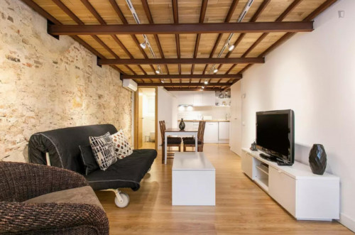 Wonderful 1-bedroom apartment in El Camp de l'Arpa del Clot  - Gallery -  7