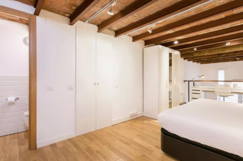 Wonderful 1-bedroom apartment in El Camp de l'Arpa del Clot  - Gallery -  3