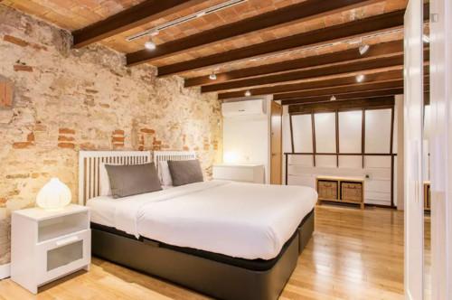 Wonderful 1-bedroom apartment in El Camp de l'Arpa del Clot  - Gallery -  5