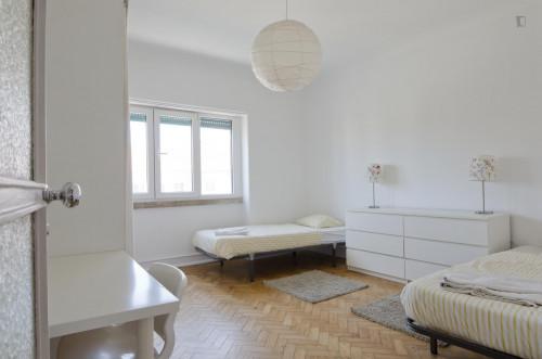 Very nice twin bedroom in Alvalade  - Gallery -  1