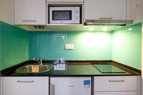 Welcoming studio in residential Penedo da Saudade  - Gallery -  5