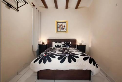 Superb 1-bedroom apartment close to Campus Ciutadella - Universitat Pompeu Fabra  - Gallery -  1