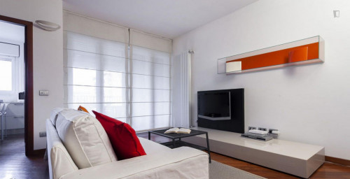 Very cool 2-bedroom apartment in Bicocca  - Gallery -  7