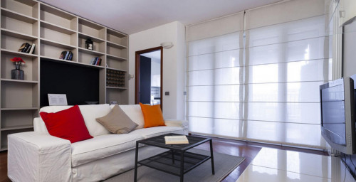 Very cool 2-bedroom apartment in Bicocca  - Gallery -  5