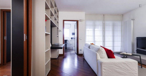 Very cool 2-bedroom apartment in Bicocca  - Gallery -  6