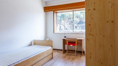 Very nice single bedroom in popular Ramalde  - Gallery -  1