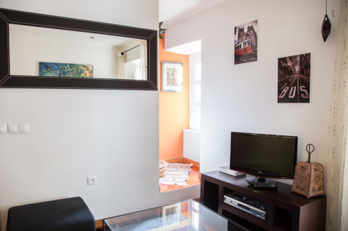 Well-decorated 1-bedroom apartment in central Bairro Alto  - Gallery -  9