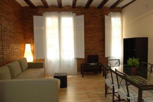 Very nice 2-bedroom flat, in lively Barrio Gótico  - Gallery -  3