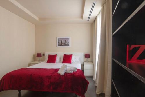 Wonderful one bedroom apartment in Madrid, near Bilbao metro station  - Gallery -  5