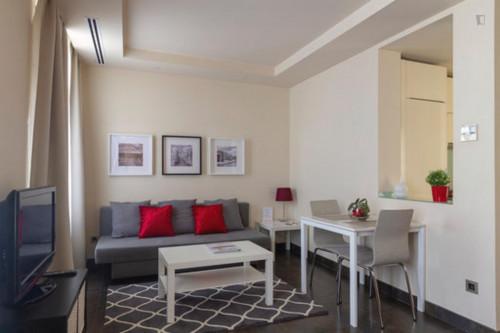 Wonderful one bedroom apartment in Madrid, near Bilbao metro station  - Gallery -  6