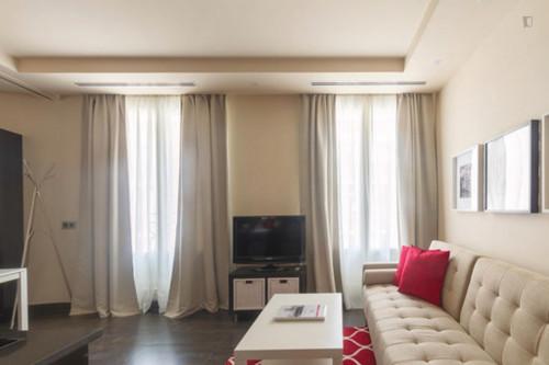 Wonderful one bedroom apartment in Madrid, near Bilbao metro station  - Gallery -  8