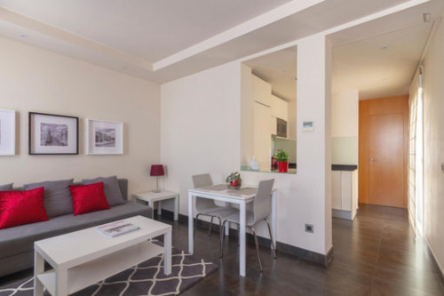 Wonderful one bedroom apartment in Madrid, near Bilbao metro station  - Gallery -  9