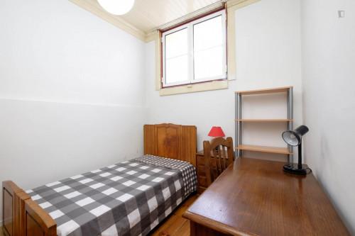 Warm single bedroom close to Jardim Botânico da Universidade de Coimbra  - Gallery -  1