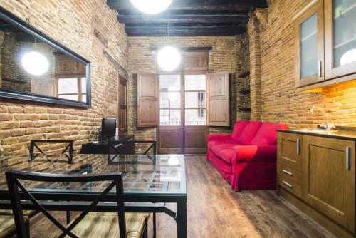 Stunning 1-bedroom flat bordering La Barceloneta  - Gallery -  1
