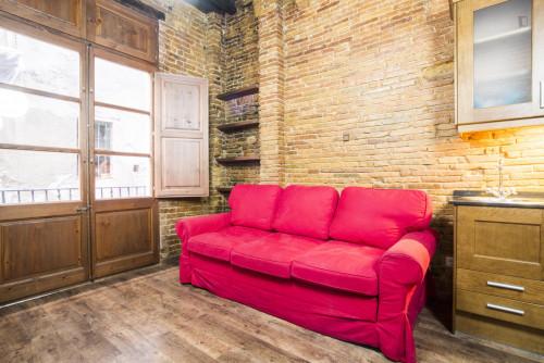 Stunning 1-bedroom flat bordering La Barceloneta  - Gallery -  3
