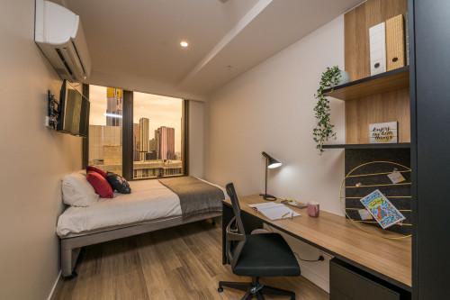 Studio Premier King Single - Low Floor - Gallery - 2