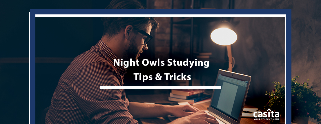 Night Owls Studying Tips and Tricks