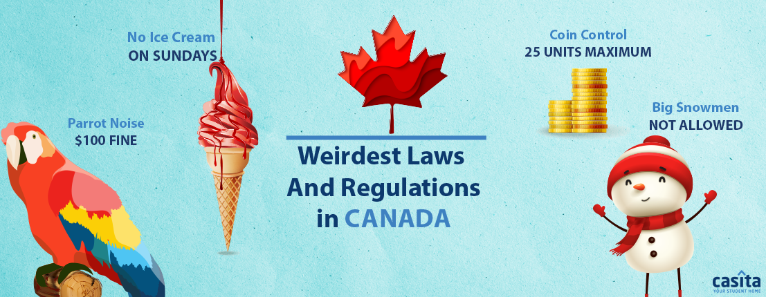 Weirdest Laws and Regulations in Canada