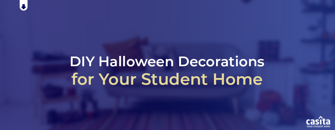 DIY Halloween Decorations for Your Student Home
