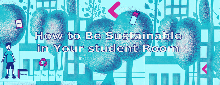 How to be More Sustainable in Your Student Home